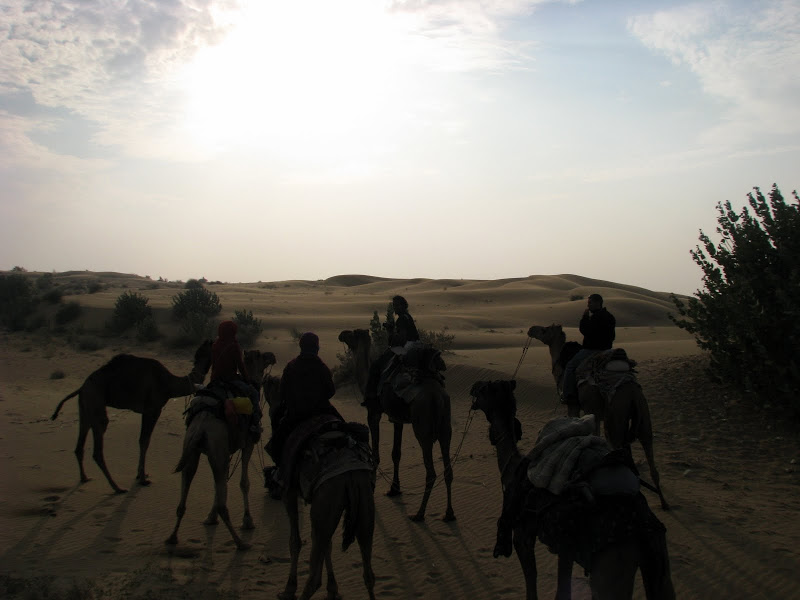 INDIA – Day by Day (11-20)